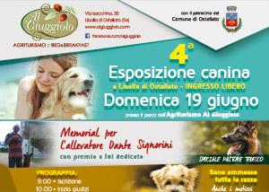 esposizione_canina_2016